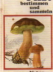 Buchcover Pilze bestimmen und sammeln - M. Svrcek - Buchbeschreibung im werner-haerter-archiv.de